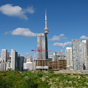 Urbanization is growing fast especially in populated cities such as Toronto.